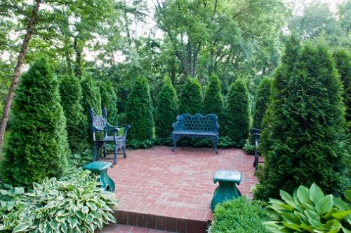 август в саду